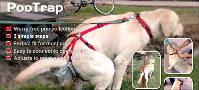 Harnais avec sac intégré pour que le chien fasse sa crotte dedans