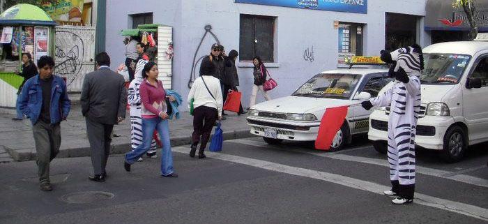 Metier Zebre pour faire traverser les gens dans la rue