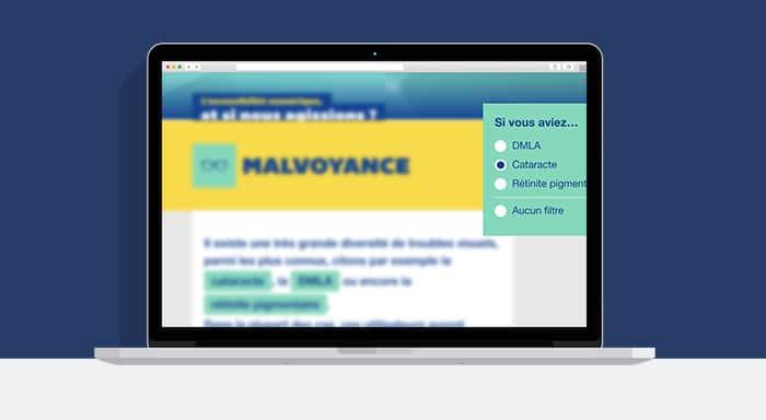 Exemple d'un site vue par une personne malvoyante